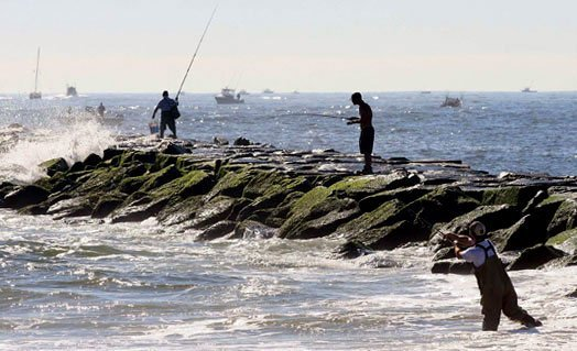 Brigantine attractions where to go what to do at the for Jersey shore fishing